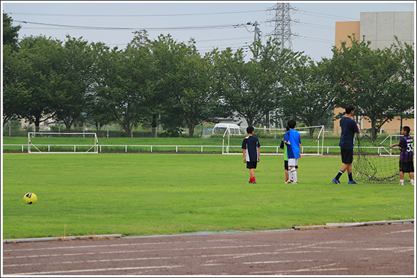 サッカーとか葉っぱとか抜け殻 Photo by CANON EOS 70D