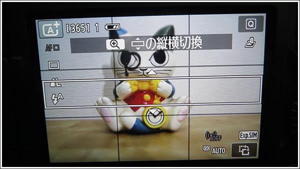 Canon EOS 70D トイカメラ風