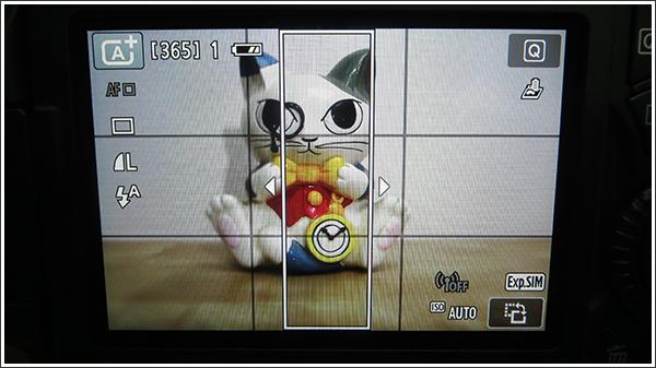 Canon EOS 70D トイカメラ風 縦